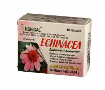 Echinacea extract concentrat (capsule x0,5g)